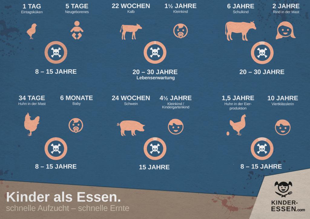 Infografik: Schlachtalter - Tiere sind kinder - Querformat